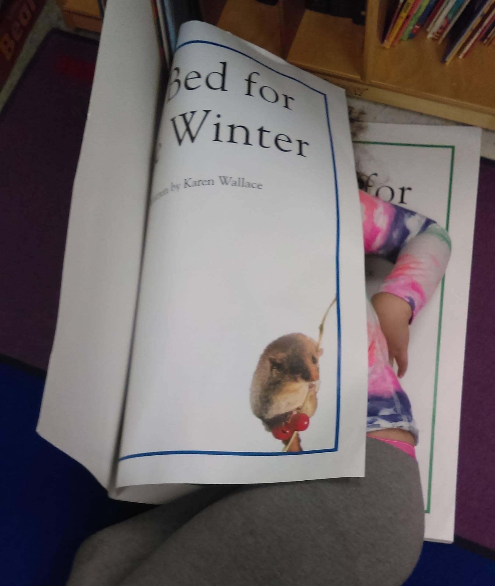 Verner Kindergarten Student,,,Really into her Book