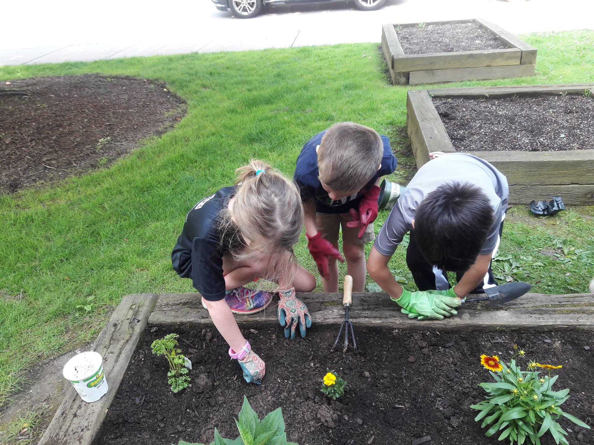 First Grade Butterfly Garden